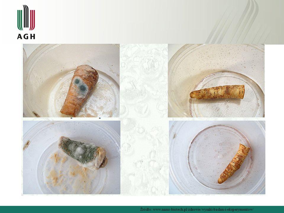Źródło: www.nano-biotech.pl/zdrowie/wyniki-badan-i-eksperymentow/