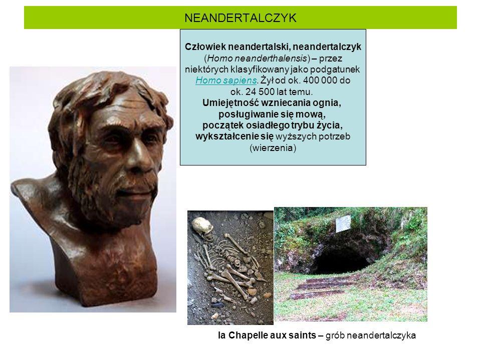 NEANDERTALCZYK Człowiek neandertalski, neandertalczyk