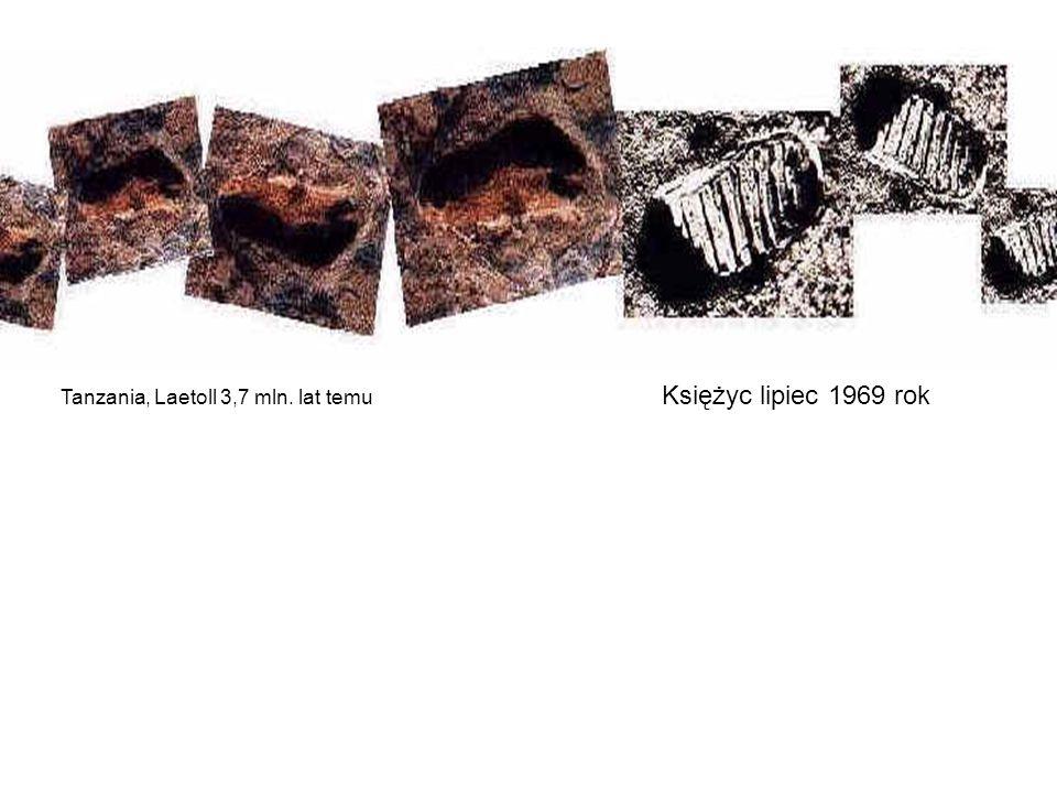 Tanzania, Laetoll 3,7 mln. lat temu