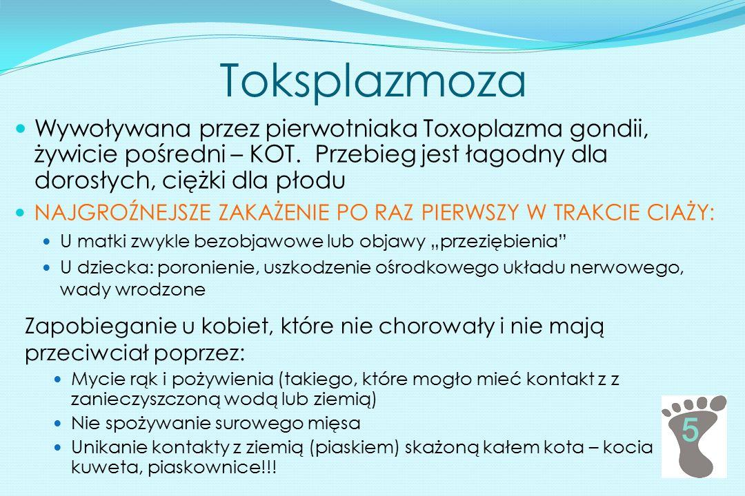 Toksplazmoza Wywoływana przez pierwotniaka Toxoplazma gondii, żywicie pośredni – KOT. Przebieg jest łagodny dla dorosłych, ciężki dla płodu.