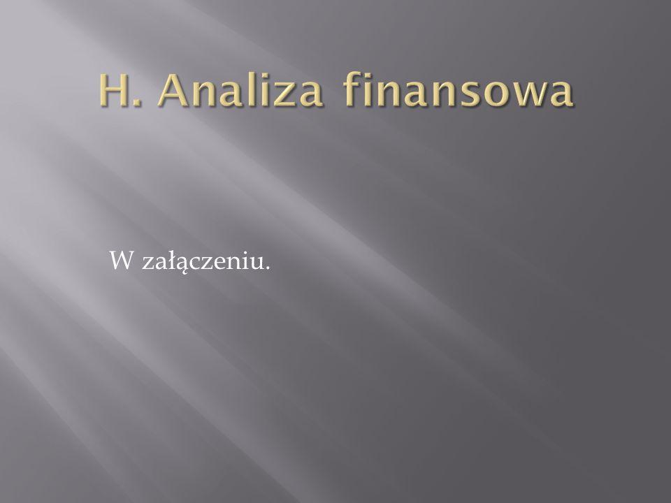 H. Analiza finansowa W załączeniu.