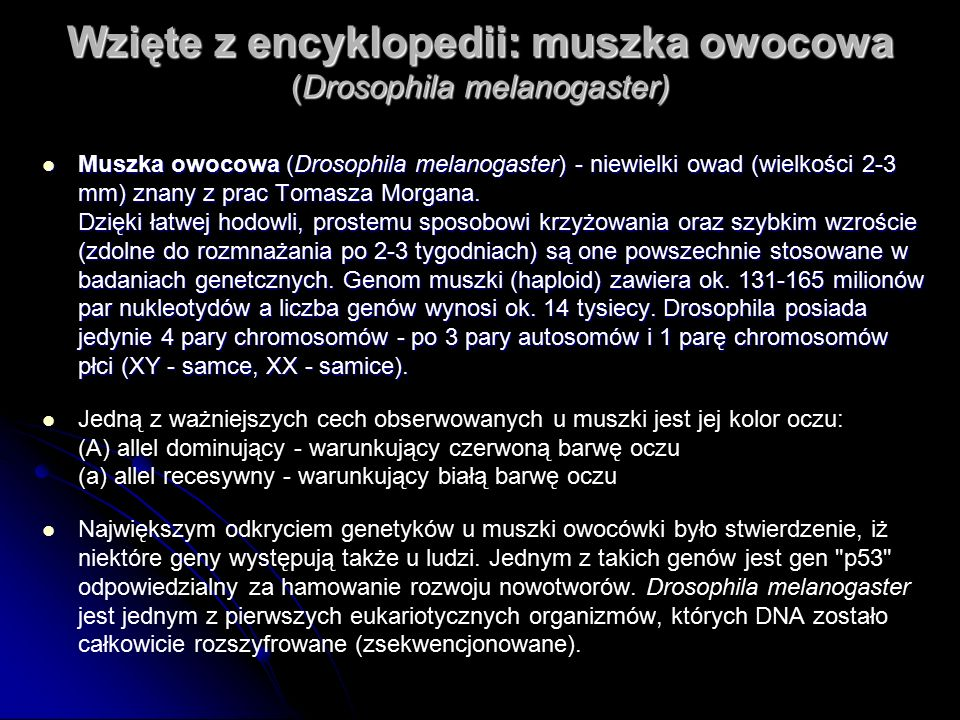 Wzięte z encyklopedii: muszka owocowa (Drosophila melanogaster)