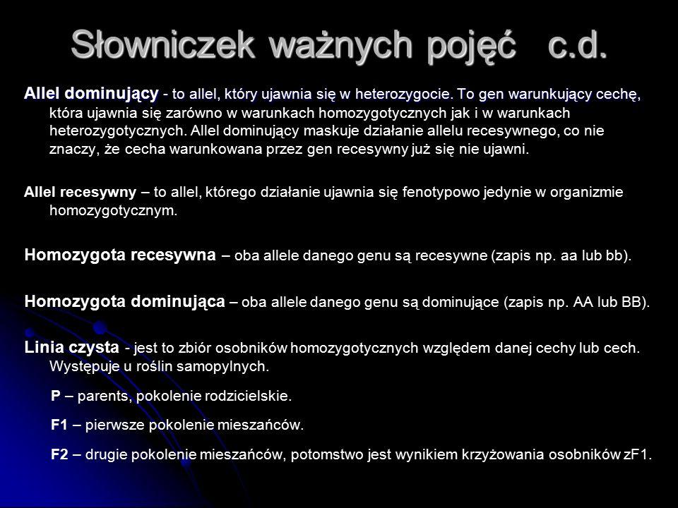Słowniczek ważnych pojęć c.d.