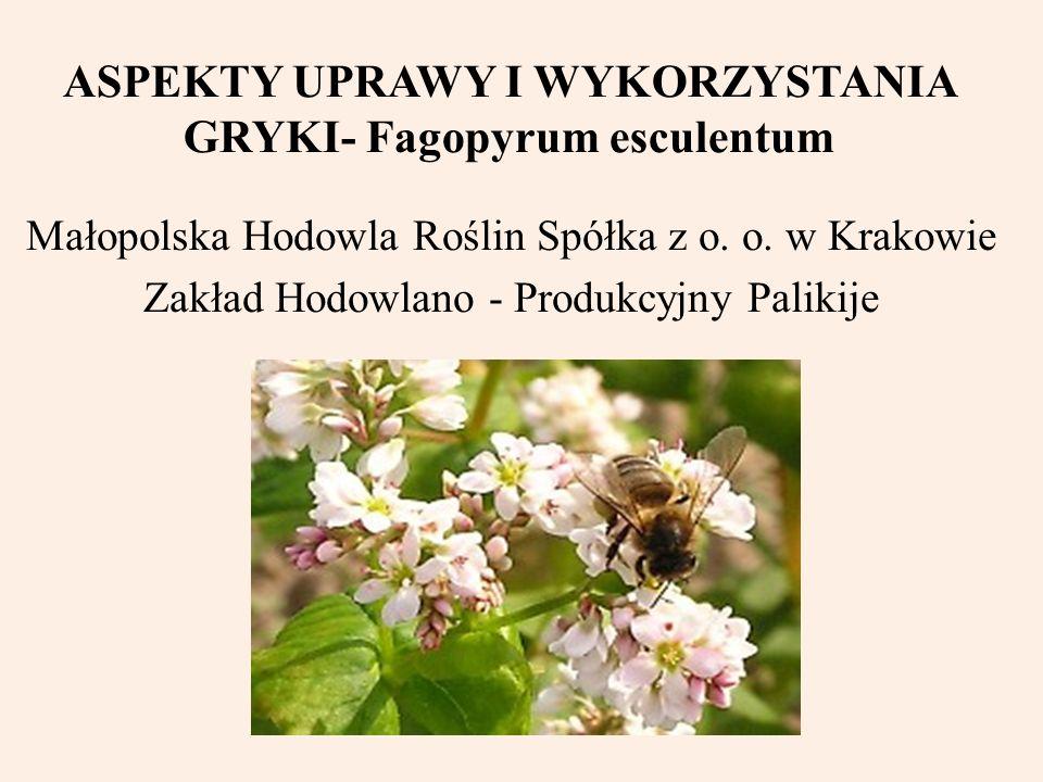 ASPEKTY UPRAWY I WYKORZYSTANIA GRYKI- Fagopyrum esculentum