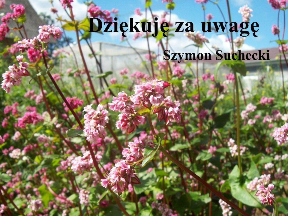 Dziękuję za uwagę Szymon Suchecki