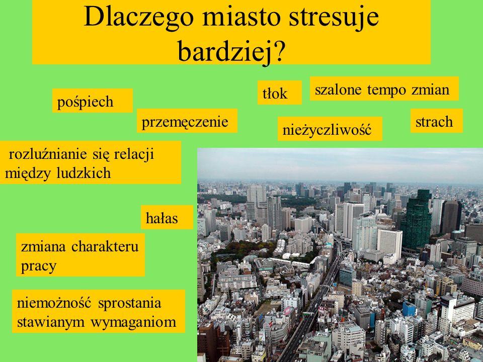 Dlaczego miasto stresuje bardziej