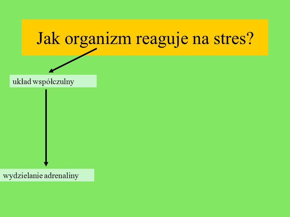 Jak organizm reaguje na stres