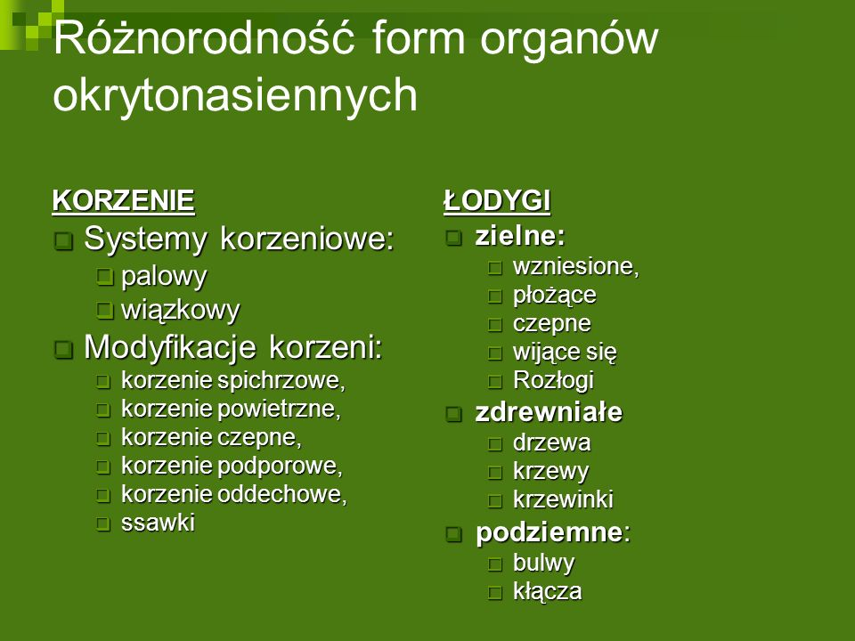 Różnorodność form organów okrytonasiennych