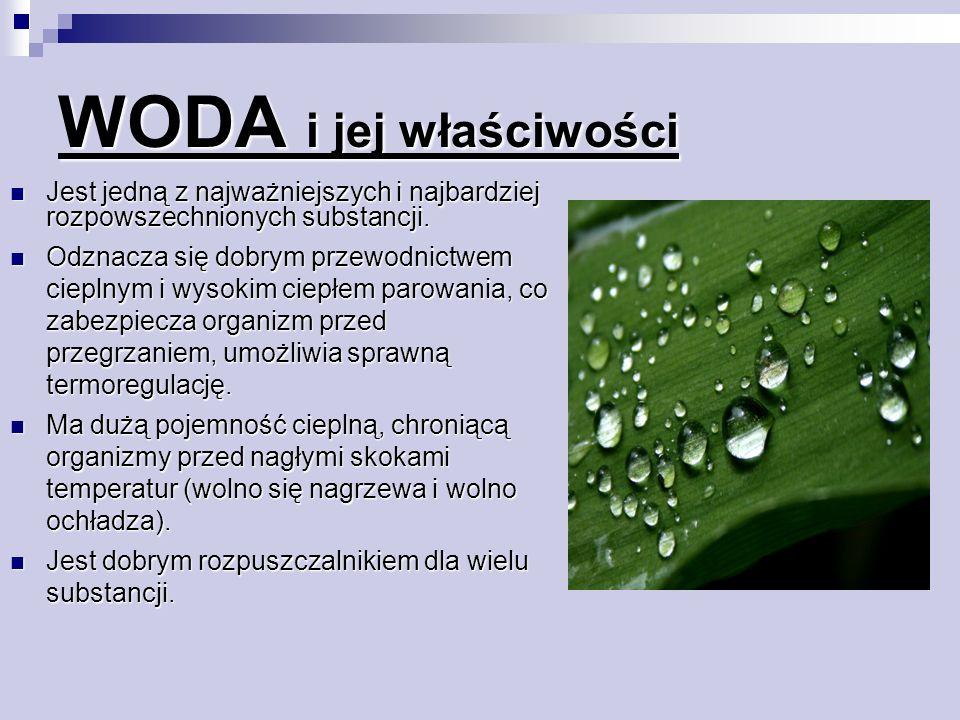 WODA i jej właściwości Jest jedną z najważniejszych i najbardziej rozpowszechnionych substancji.