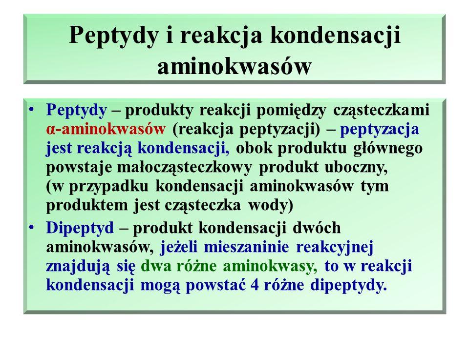 Peptydy i reakcja kondensacji aminokwasów