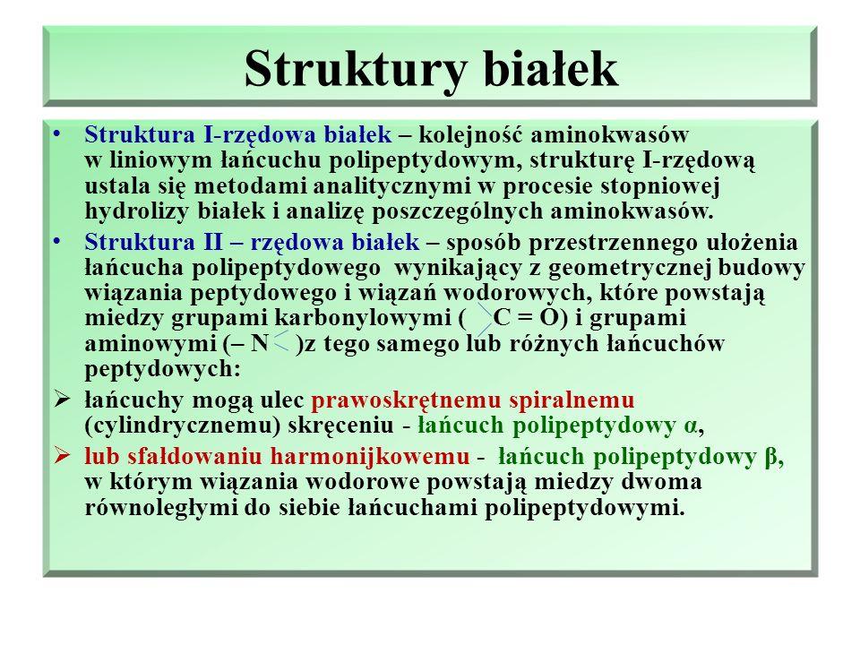 Struktury białek