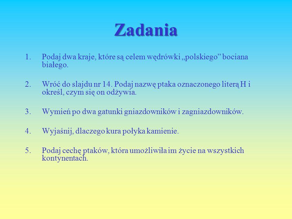 """Zadania Podaj dwa kraje, które są celem wędrówki """"polskiego bociana białego."""