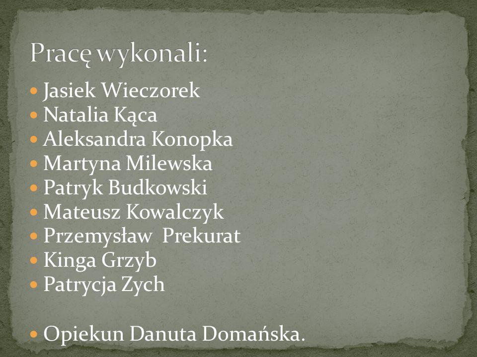 Pracę wykonali: Jasiek Wieczorek Natalia Kąca Aleksandra Konopka