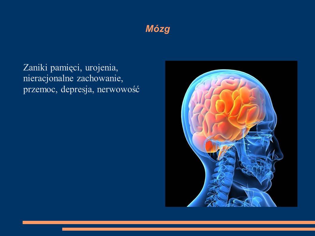 Mózg Zaniki pamięci, urojenia, nieracjonalne zachowanie, przemoc, depresja, nerwowość