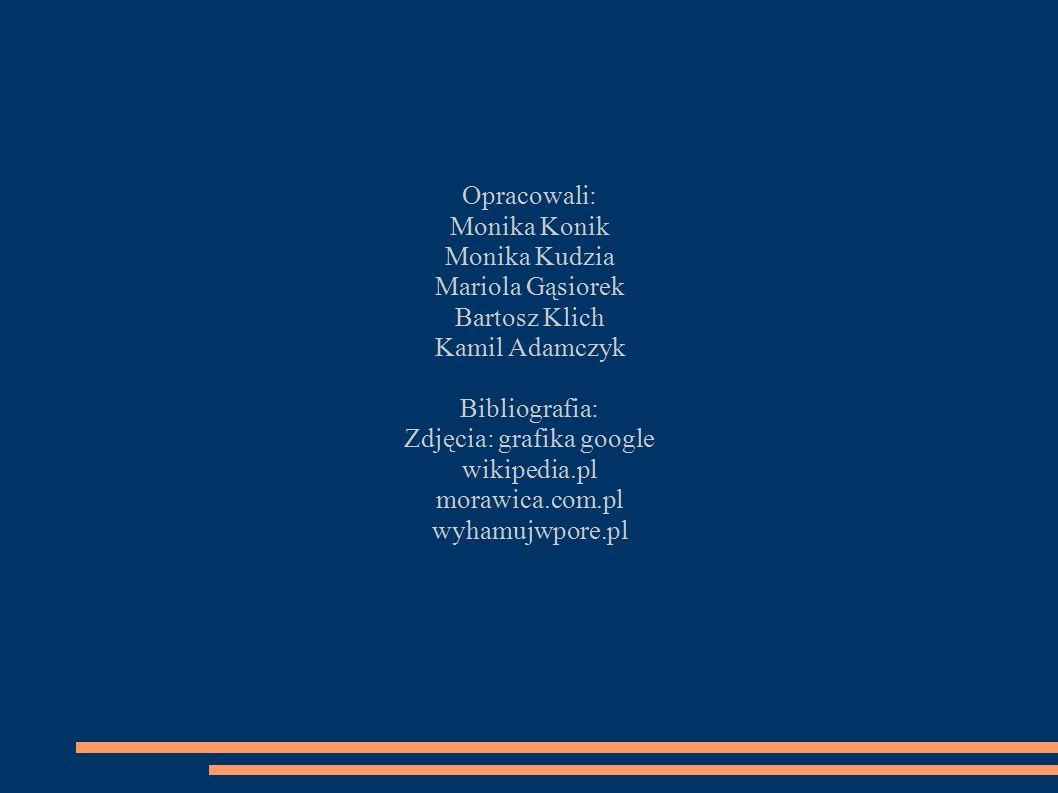 Opracowali: Monika Konik Monika Kudzia Mariola Gąsiorek Bartosz Klich Kamil Adamczyk