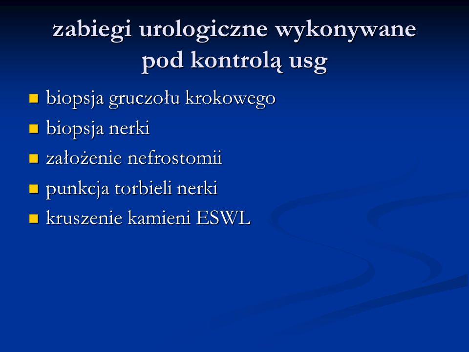 zabiegi urologiczne wykonywane pod kontrolą usg