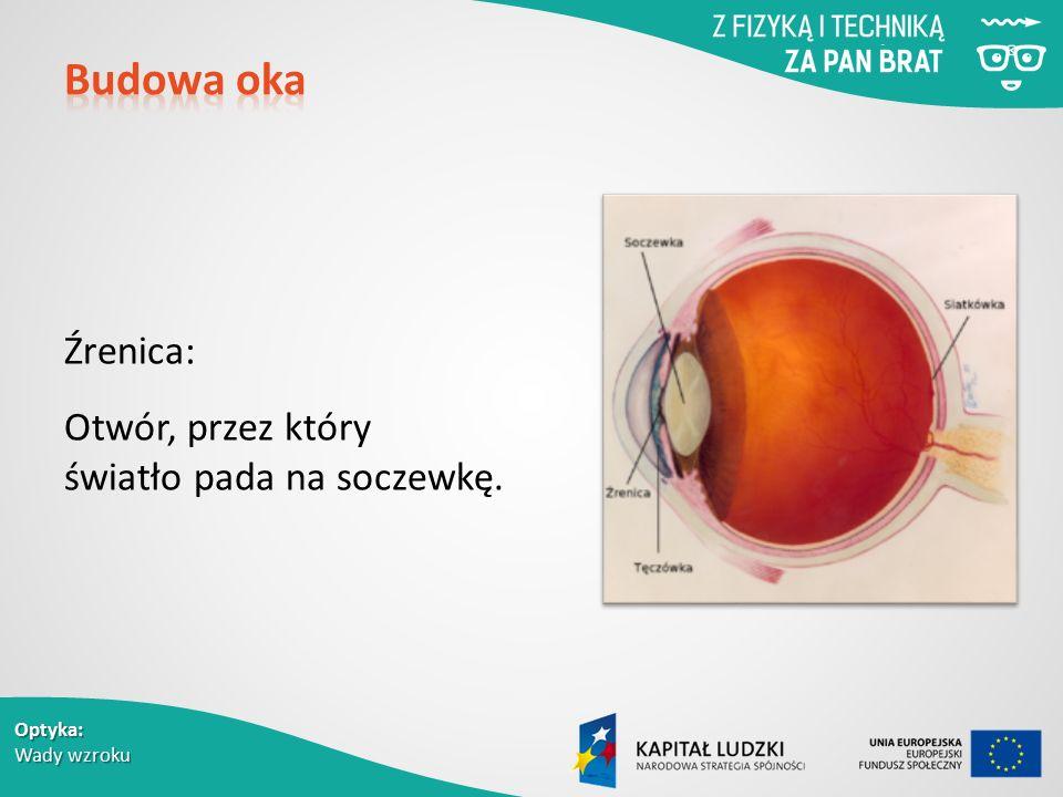 Budowa oka Źrenica: Otwór, przez który światło pada na soczewkę.