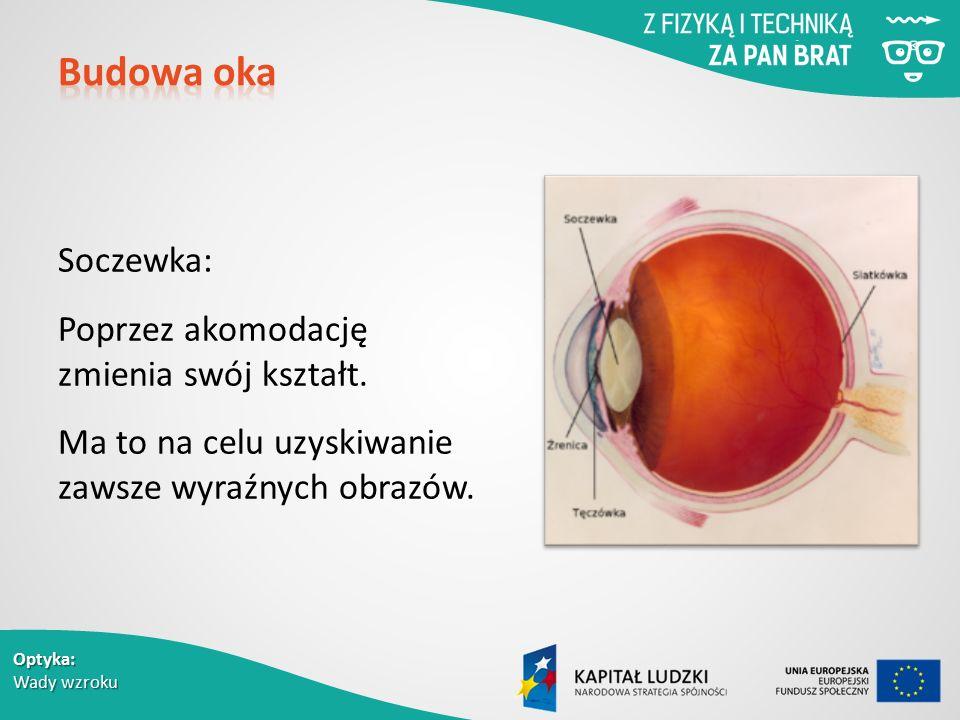 Budowa oka Soczewka: Poprzez akomodację zmienia swój kształt.