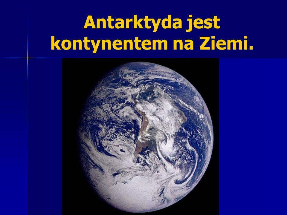 Antarktyda jest kontynentem na Ziemi.