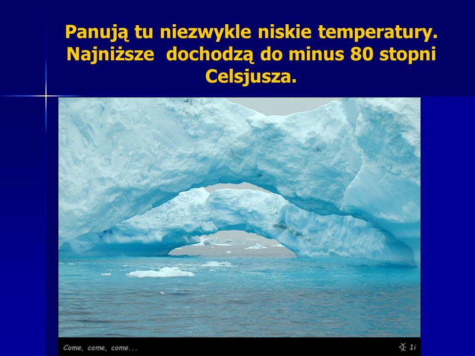 Panują tu niezwykle niskie temperatury