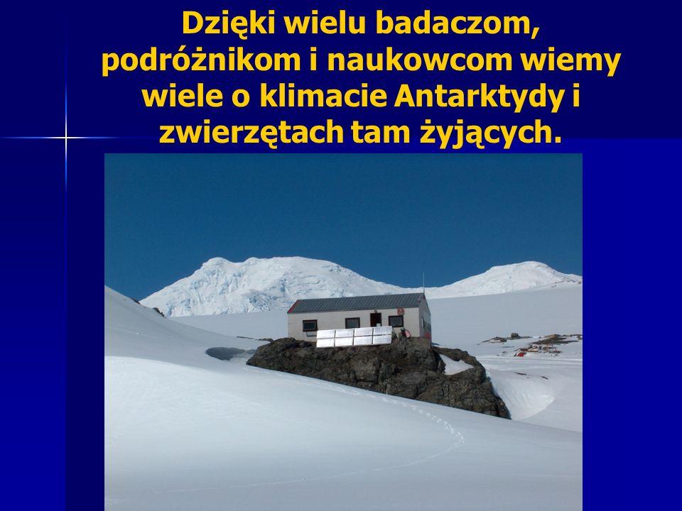 Dzięki wielu badaczom, podróżnikom i naukowcom wiemy wiele o klimacie Antarktydy i zwierzętach tam żyjących.