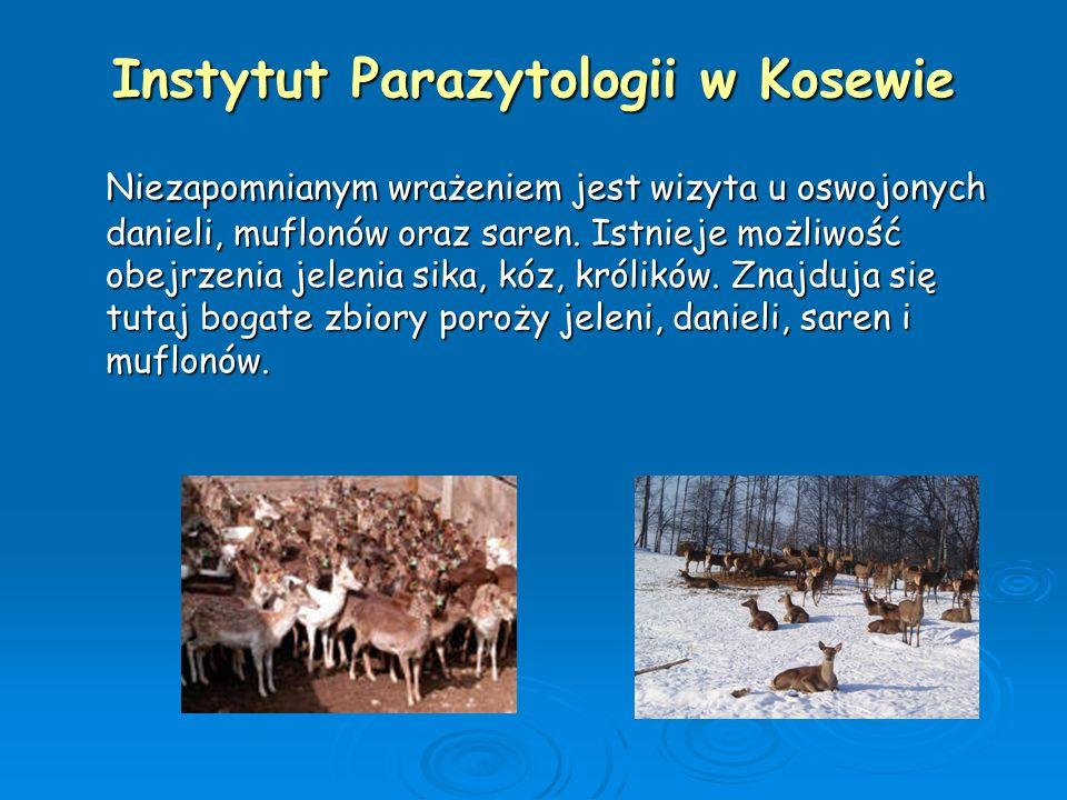 Instytut Parazytologii w Kosewie