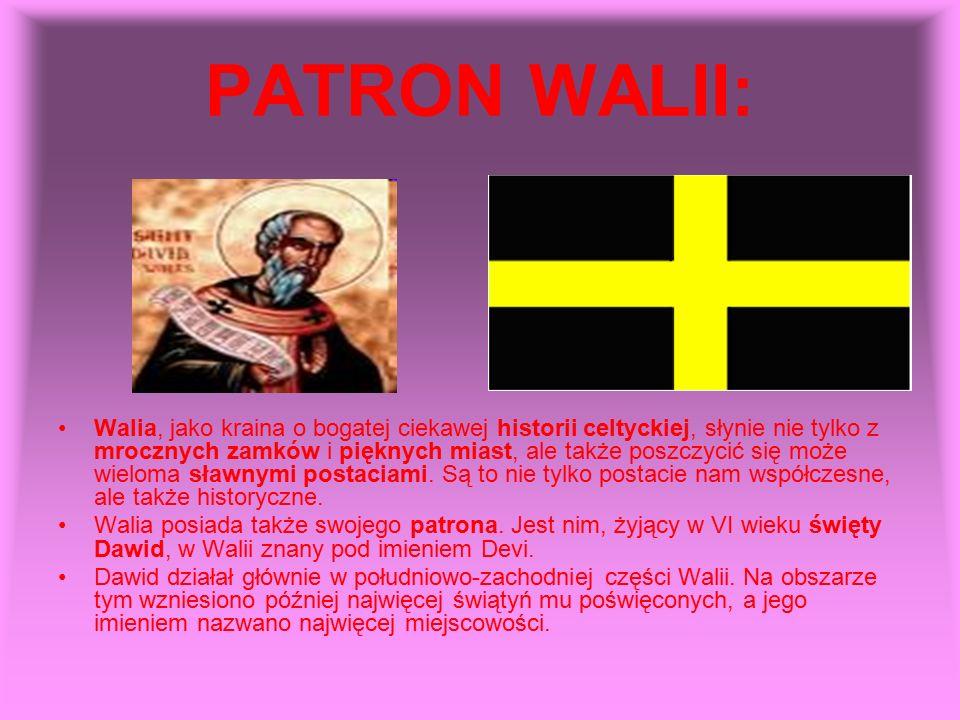PATRON WALII: