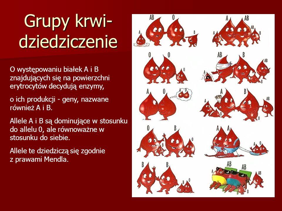 Grupy krwi- dziedziczenie