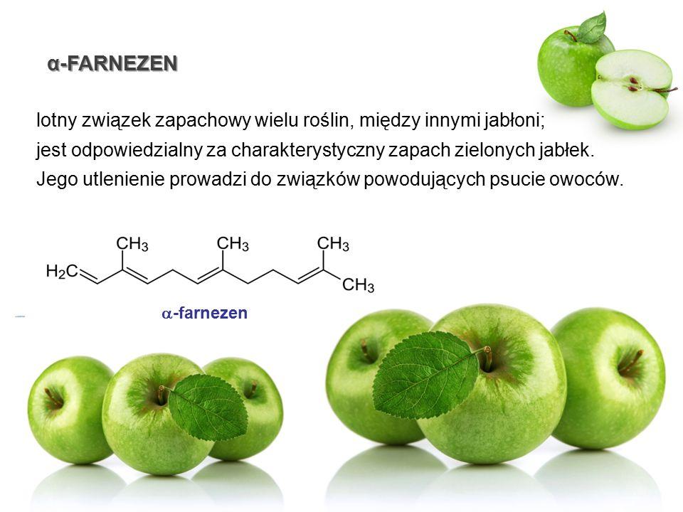 α-FARNEZEN