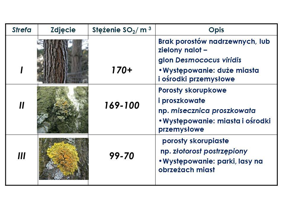 I 170+ II 169-100 III 99-70 Strefa Zdjęcie Stężenie SO2/ m 3 Opis