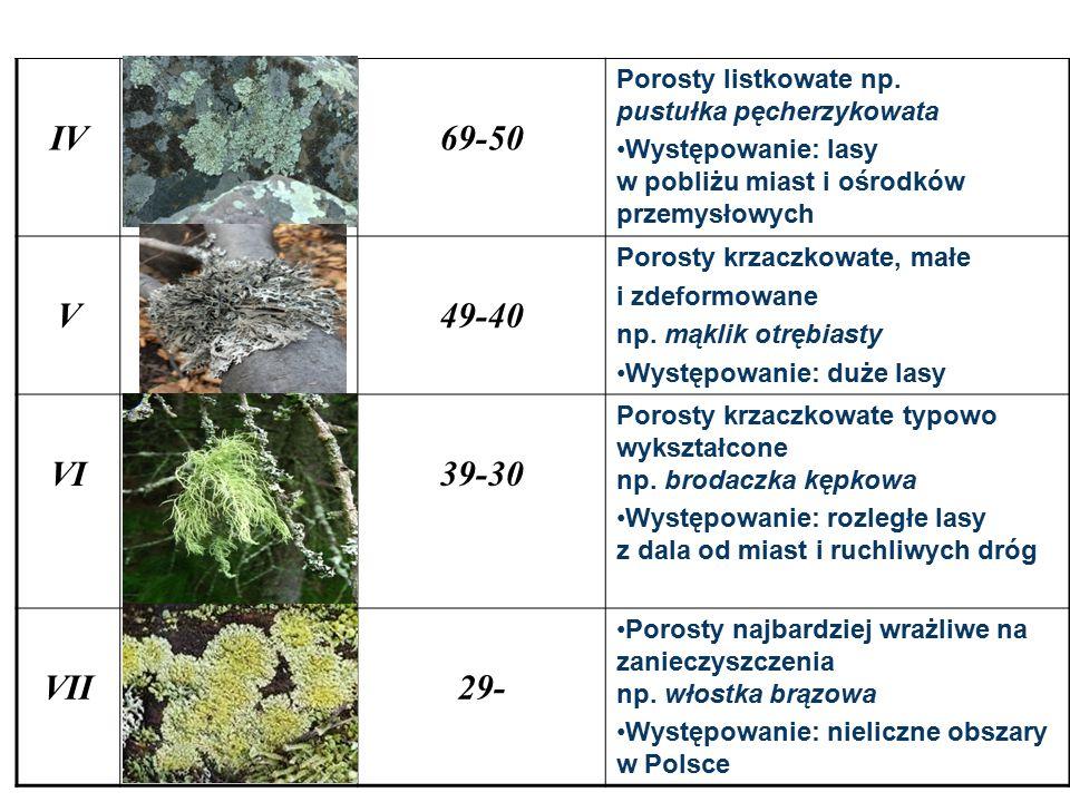 IV 69-50. Porosty listkowate np. pustułka pęcherzykowata. Występowanie: lasy w pobliżu miast i ośrodków przemysłowych.