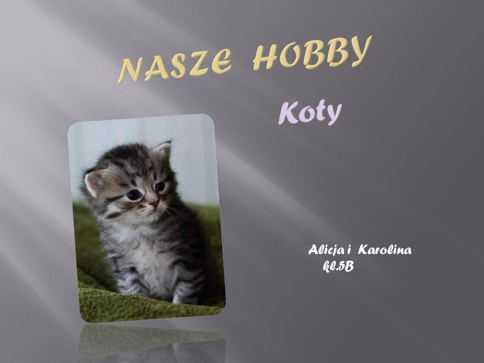 Nasze Hobby Koty Alicja i Karolina kl.5B