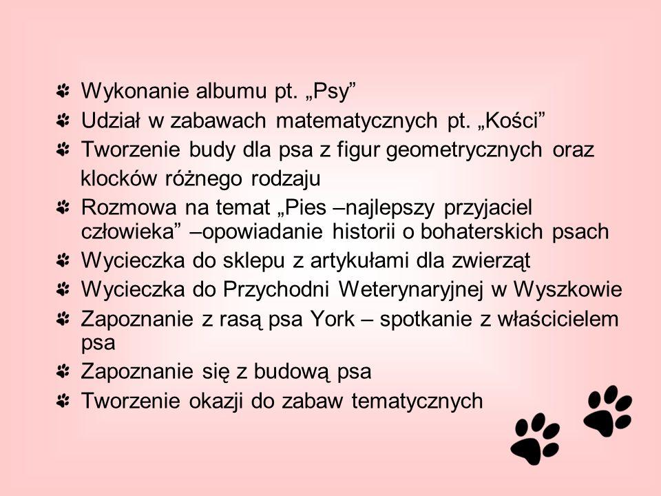 """Wykonanie albumu pt. """"Psy"""
