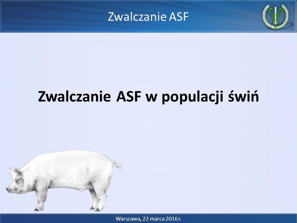 Zwalczanie ASF w populacji świń