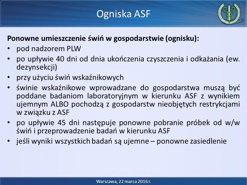 Ogniska ASF Ponowne umieszczenie świń w gospodarstwie (ognisku):