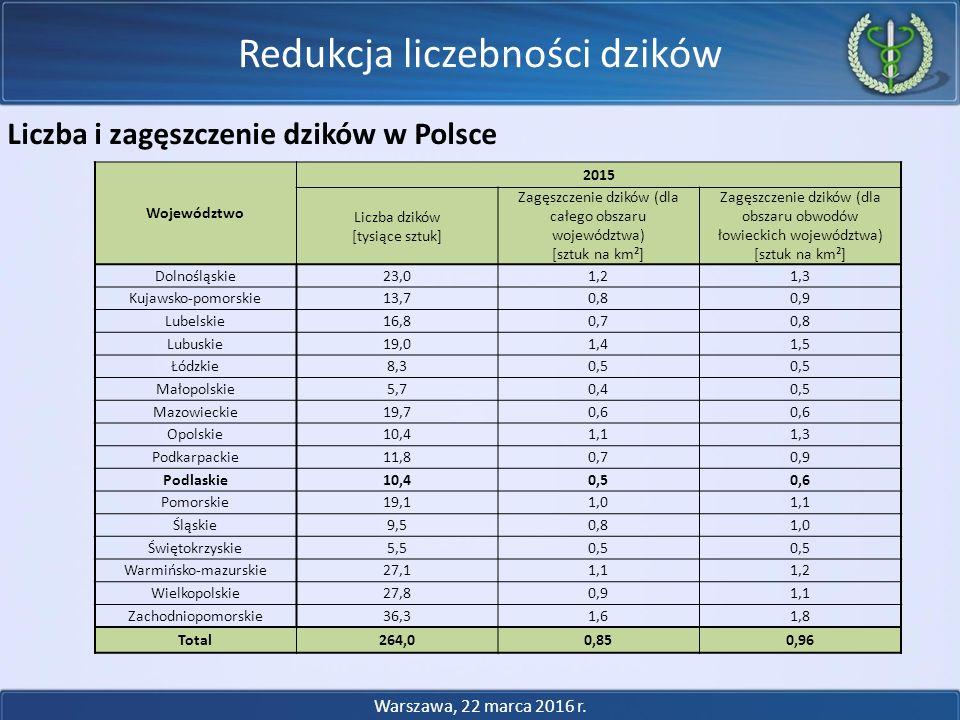 Redukcja liczebności dzików