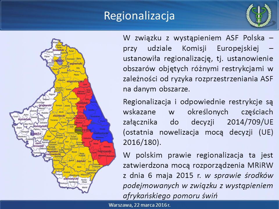 Regionalizacja