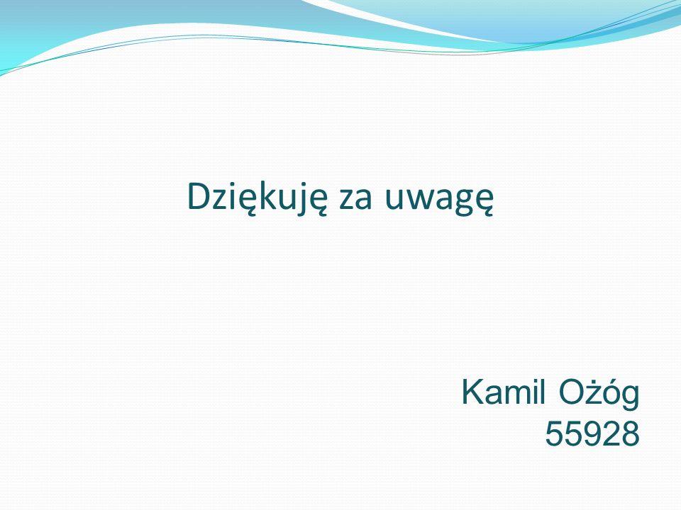 Dziękuję za uwagę Kamil Ożóg 55928