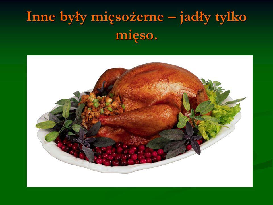Inne były mięsożerne – jadły tylko mięso.
