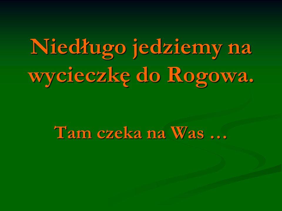 Niedługo jedziemy na wycieczkę do Rogowa.