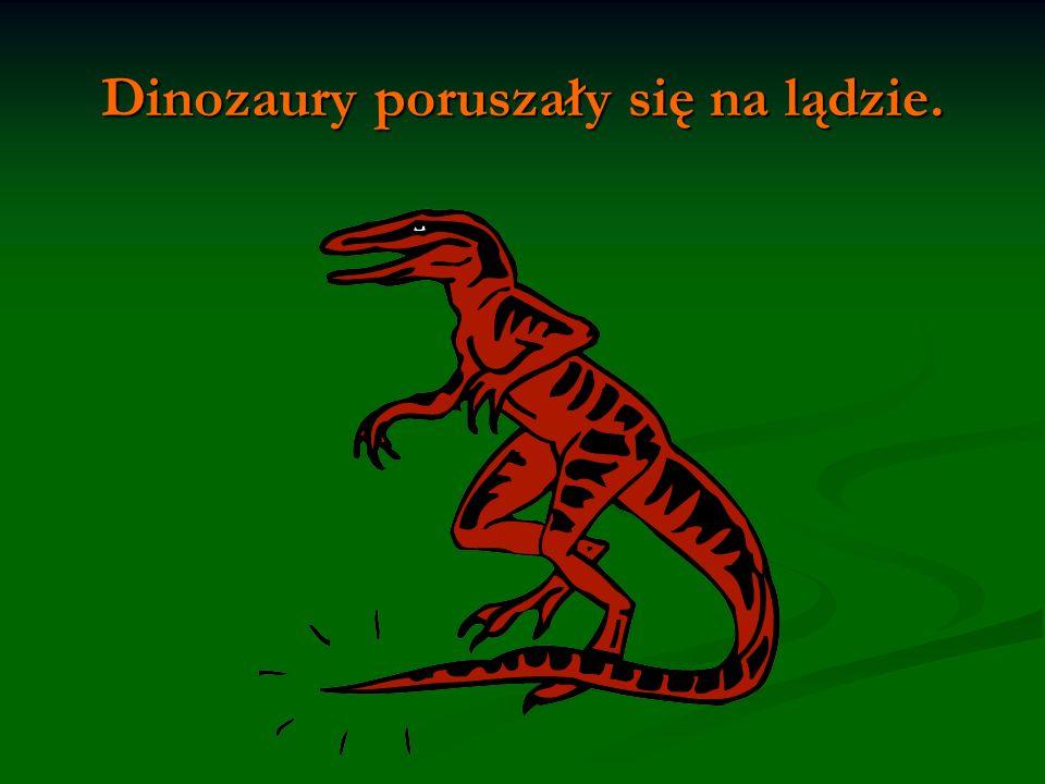 Dinozaury poruszały się na lądzie.