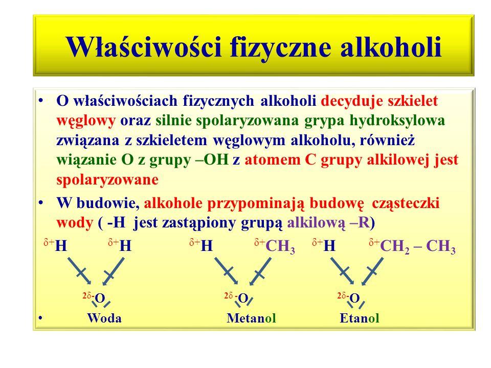 Właściwości fizyczne alkoholi