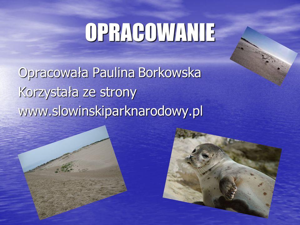 OPRACOWANIE Opracowała Paulina Borkowska Korzystała ze strony