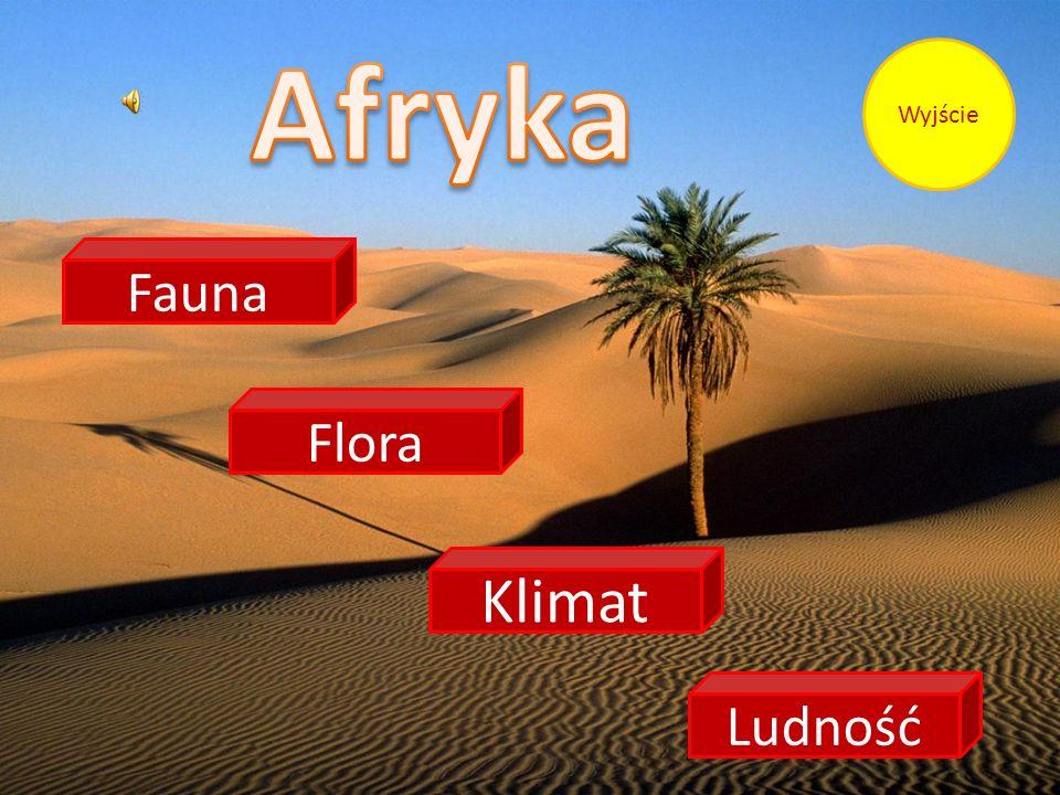 Afryka Wyjście Fauna Flora Klimat Ludność