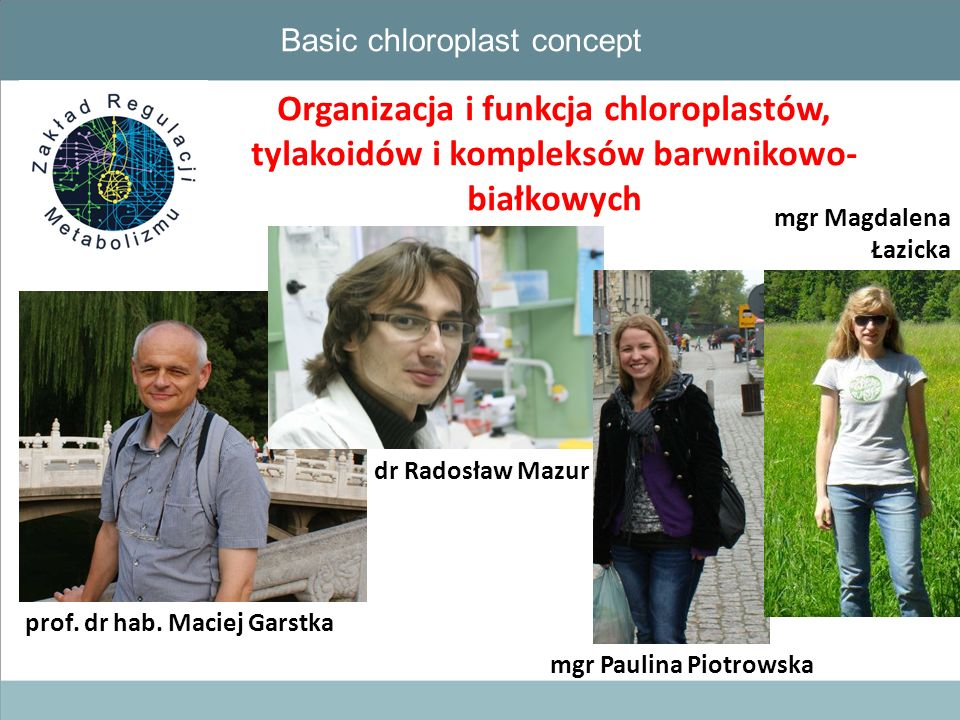Basic chloroplast concept