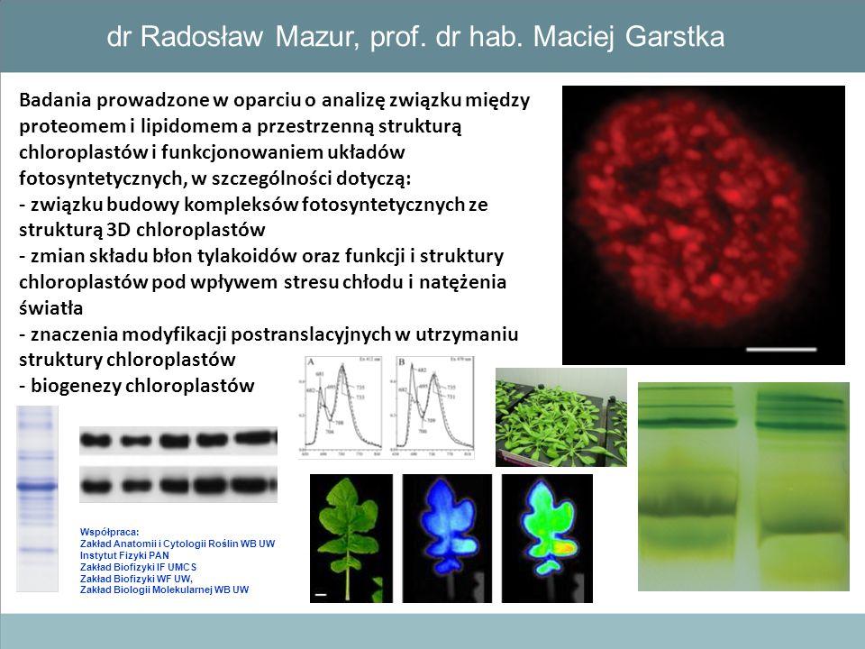 dr Radosław Mazur, prof. dr hab. Maciej Garstka