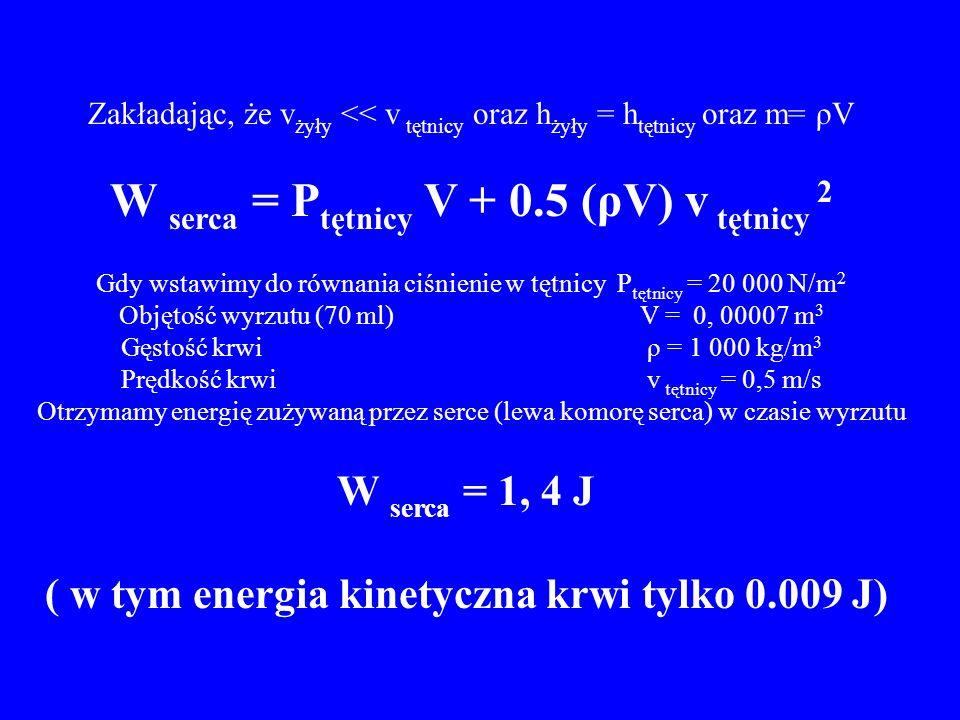 W serca = Ptętnicy V + 0.5 (ρV) v tętnicy 2
