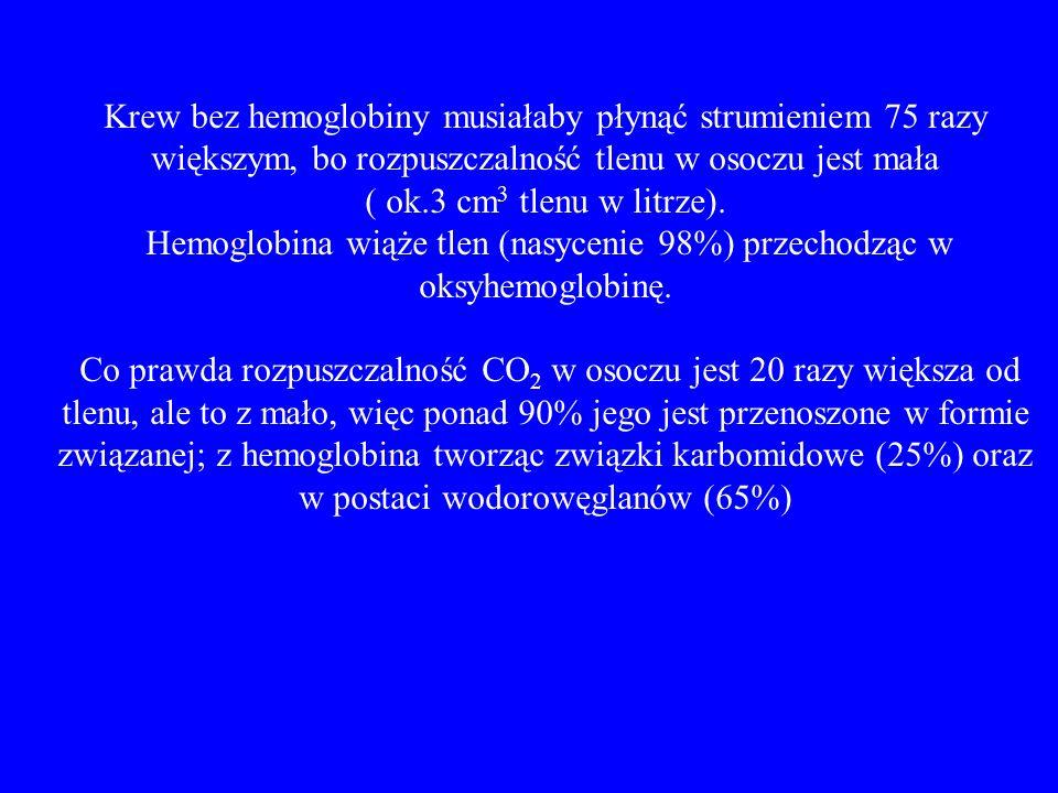 Hemoglobina wiąże tlen (nasycenie 98%) przechodząc w oksyhemoglobinę.