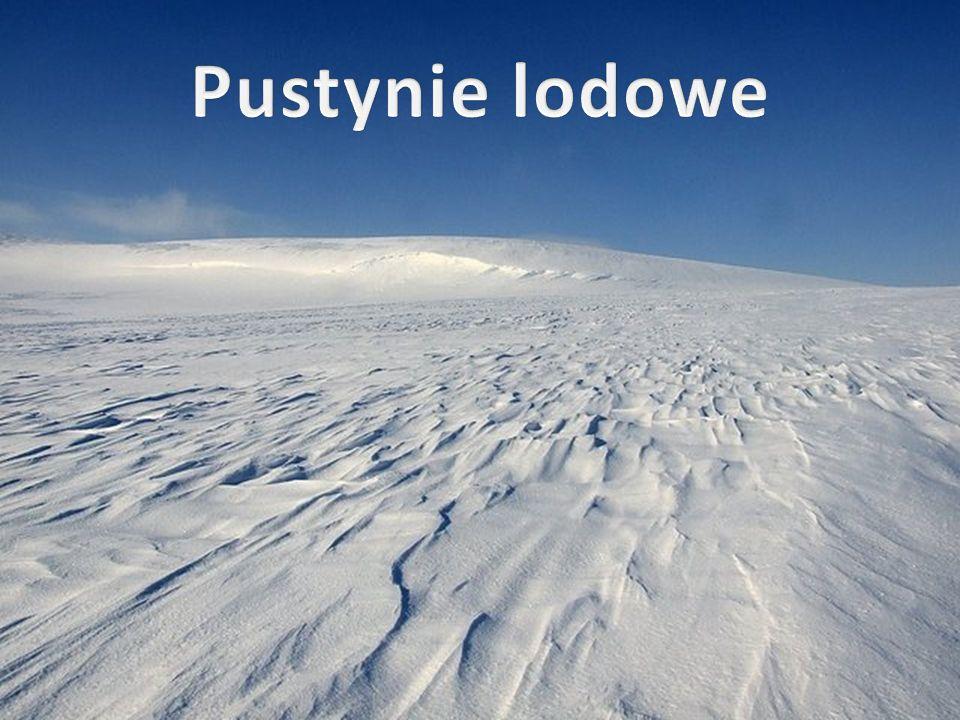 Pustynie lodowe