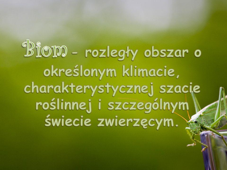 Biom - rozległy obszar o określonym klimacie, charakterystycznej szacie roślinnej i szczególnym świecie zwierzęcym.